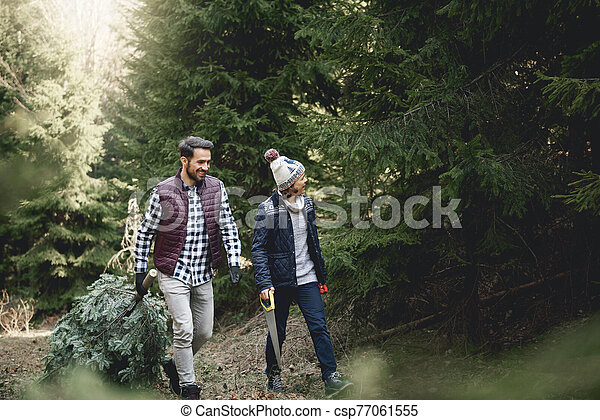 Father and son carrying big and heavy christmas tree - csp77061555