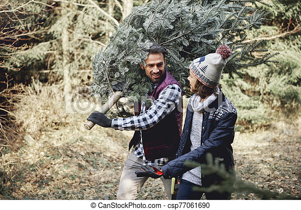 Father and son carrying fresh Christmas tree - csp77061690