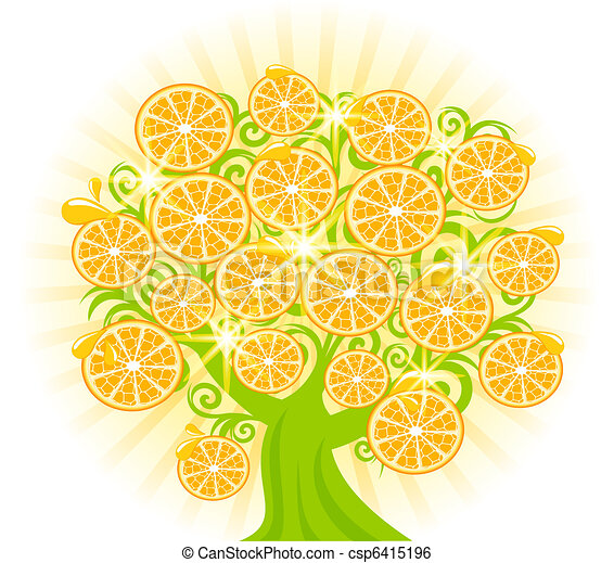 fatias, oranges., árvore, ilustração, vetorial - csp6415196