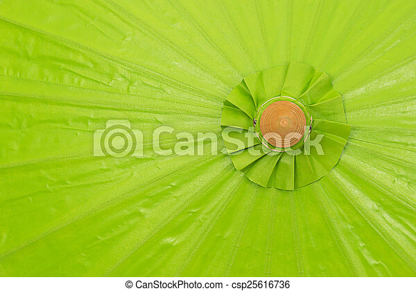 fatto mano, ombrello, verde - csp25616736