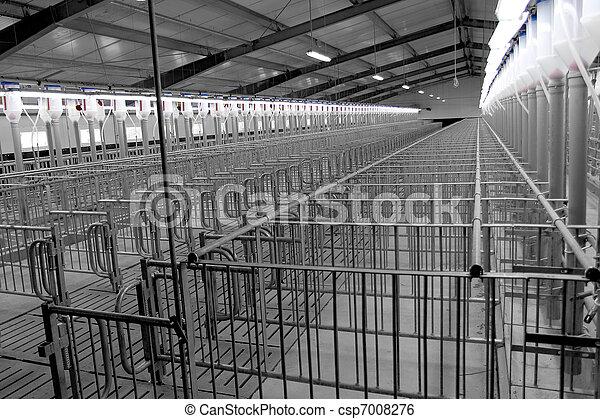 Fattoria allevamento moderno maiale fertilization for Piani di fattoria stonegate