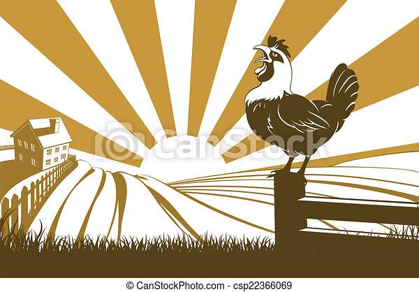 fattoria, gallo - csp22366069
