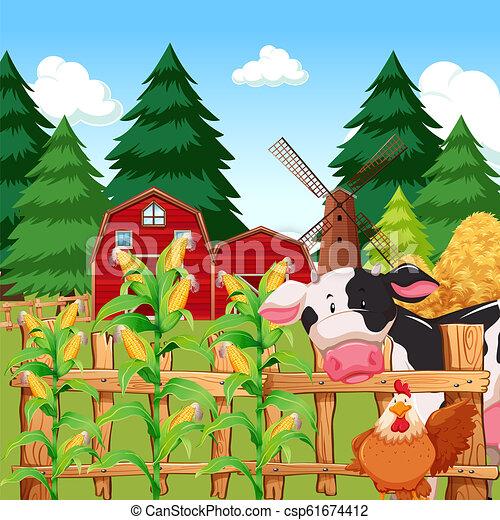 fattoria, granaglie, animali - csp61674412