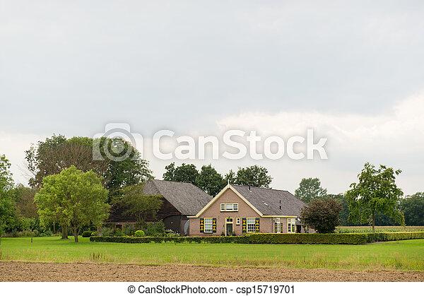 fattoria, olandese - csp15719701