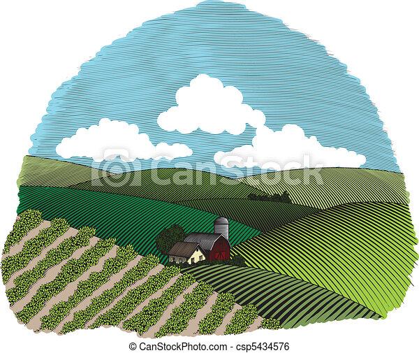 fattoria, rurale, vignette, scena, colorare - csp5434576