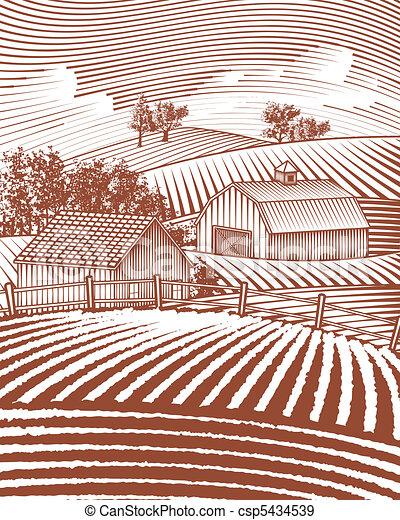 fattoria, scena, paesaggio - csp5434539