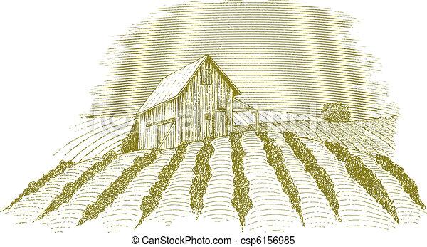 fattoria, scena - csp6156985