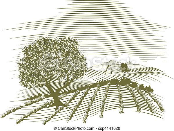 fattoria, scena, woodcut - csp4141628
