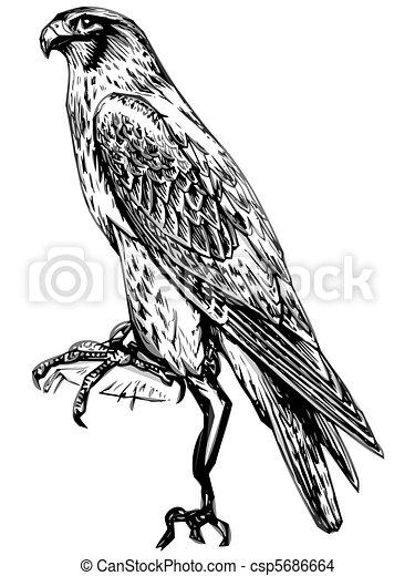 Faucon rev tir art art coloring travail ton - Dessin de faucon ...