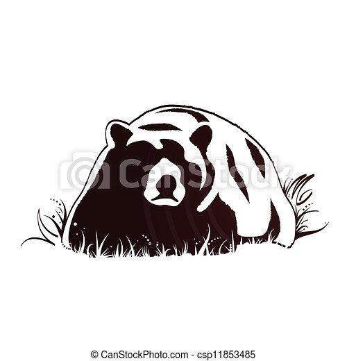fauna, oso - csp11853485