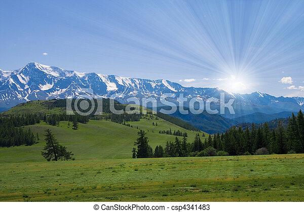 fauna, paisagem, prado, natureza, altay, montanhas - csp4341483