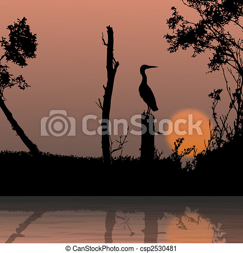 fauna, ramo, silueta, pássaro, vista - csp2530481