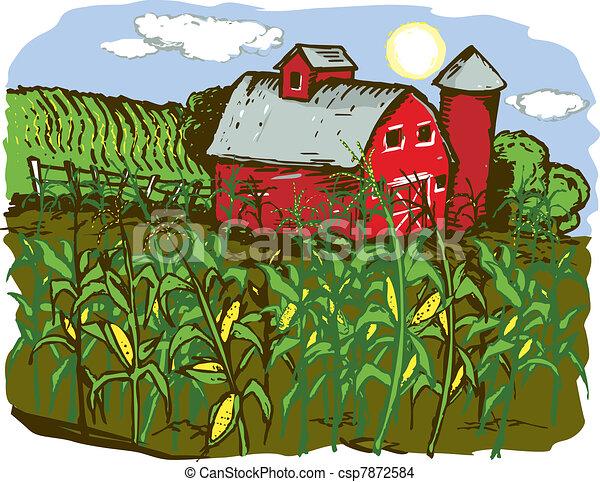 fazenda, milho - csp7872584