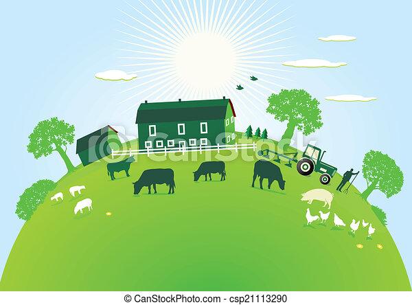 fazenda, verde - csp21113290