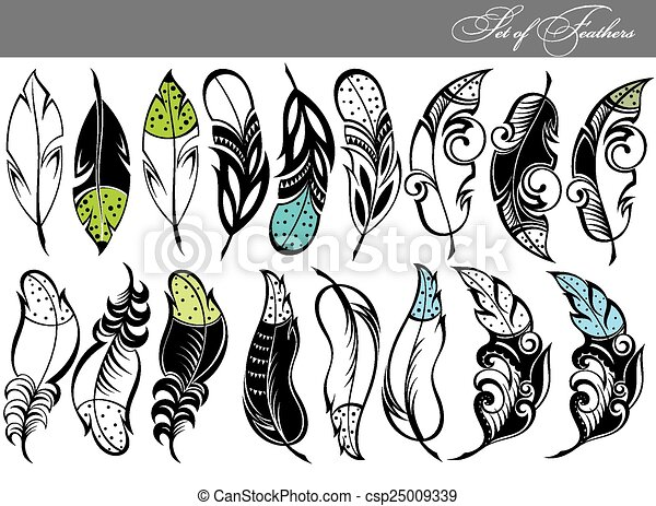 Line Art Feather : Feather collection set vectors search clip art