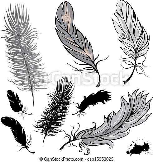 Feathers - csp15353023