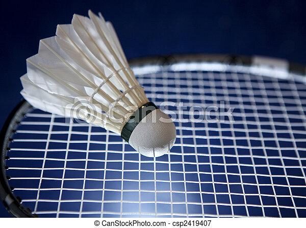 Badminton Schläger und Shuttlecock - csp2419407