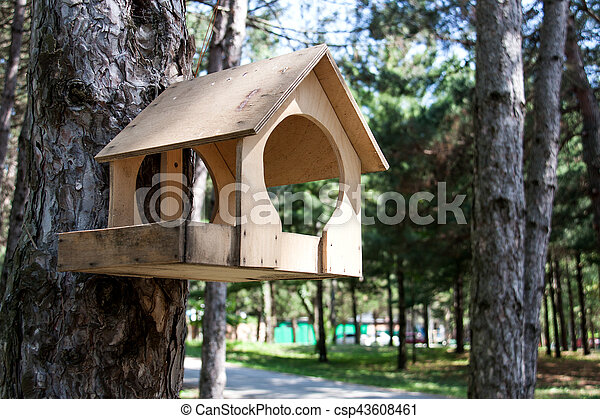 feeding trough for birds on the tree in the park - csp43608461