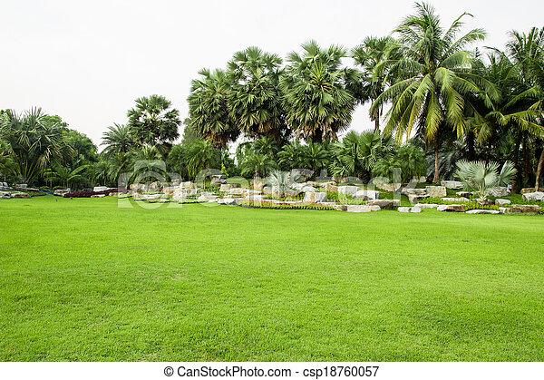 feldgras, park, grün - csp18760057