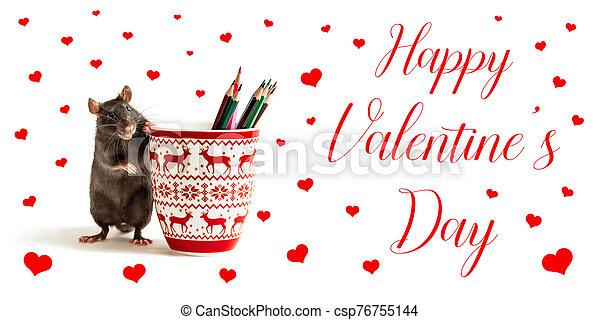feliz, valentino, negro, jarras, rojo, coloreado, rata, corazones, lápices, día, inscripción, estantes - csp76755144