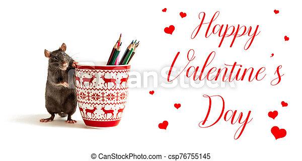 feliz, valentino, negro, jarras, rojo, coloreado, rata, corazones, lápices, día, inscripción, estantes - csp76755145