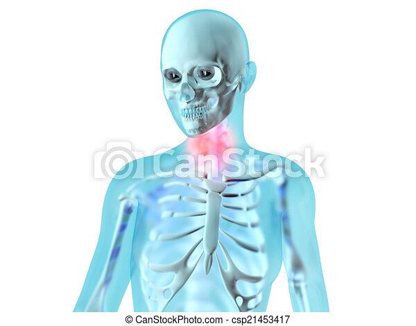 Female Anatomy Throat Ache Female Anatomy Throat Ache 3d