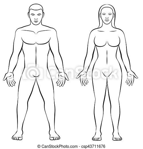 Female body shape male body mass illustration. Man and woman ...
