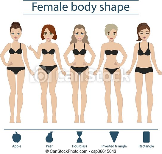 Female Body Shape Set Set Of Five Different Types Of Female Figures