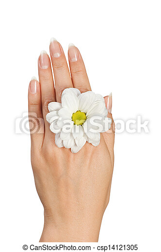 female hand with flower - csp14121305