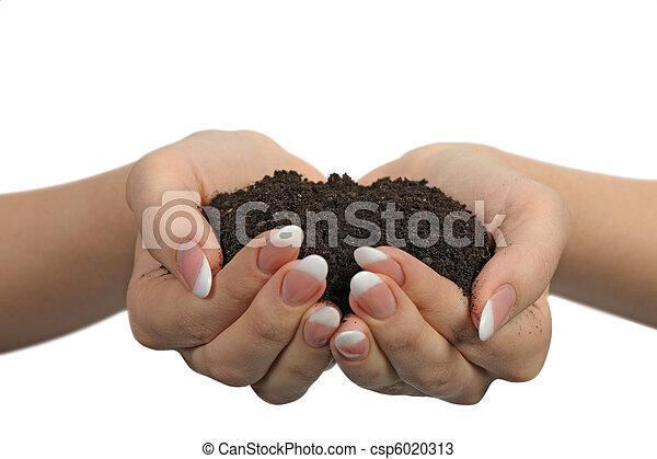 Female hands with soil - csp6020313