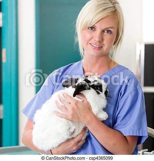 Female Vet with Rabbit - csp4365099
