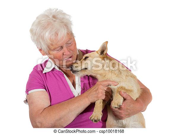 femme âgée, chien, elle, aimer - csp10018168