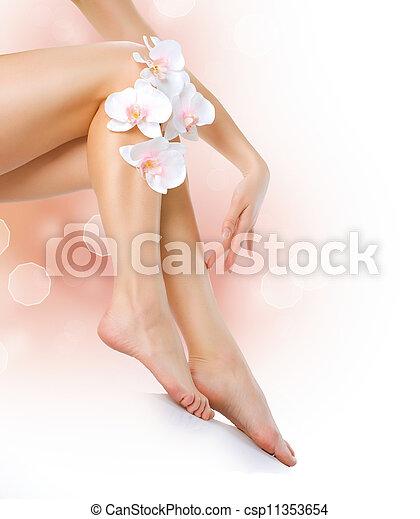 femme, jambes, spa., legs., isolé, sain, long, blanc - csp11353654
