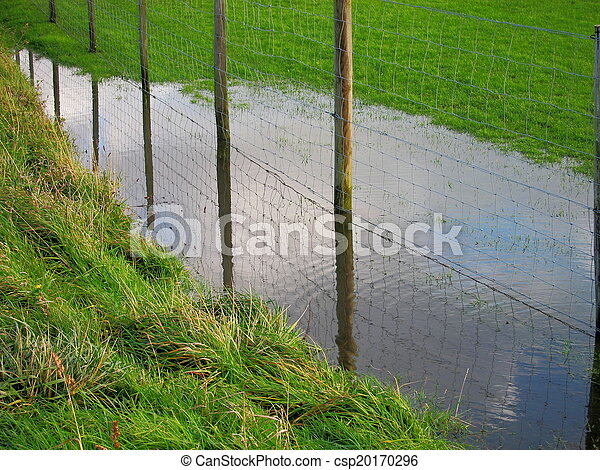 Fence in a meadow - csp20170296