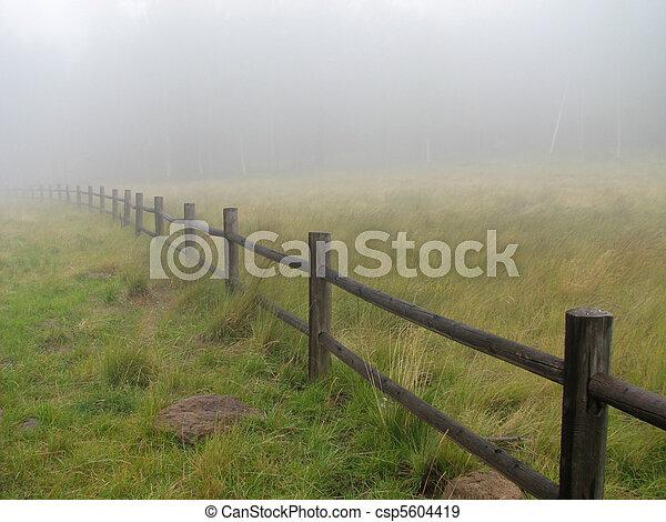 fence in fog - csp5604419