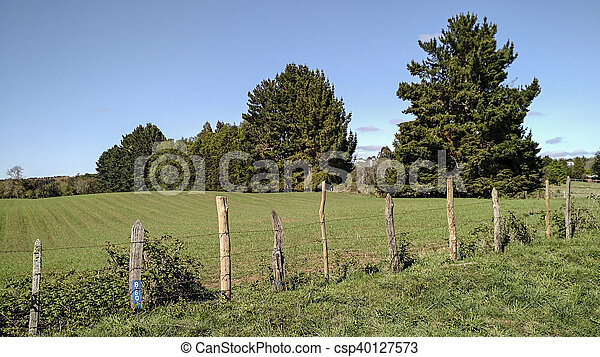 fence on the field - csp40127573