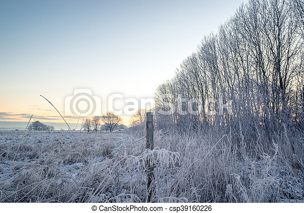 Fence post on a frosty field - csp39160226