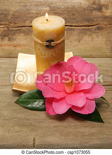 Feng Shui candle and camellia - csp1073055