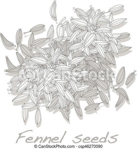 Partsslide in addition Vintage  pass Vector 15342242 furthermore Fennel Seeds On White Background 46270090 additionally Clothes Simple Shapes Collection 18489038 moreover Illustration Of Eggs 10207299. on simple home plans