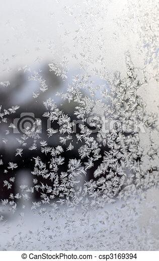Gefrorenes Fenster - csp3169394