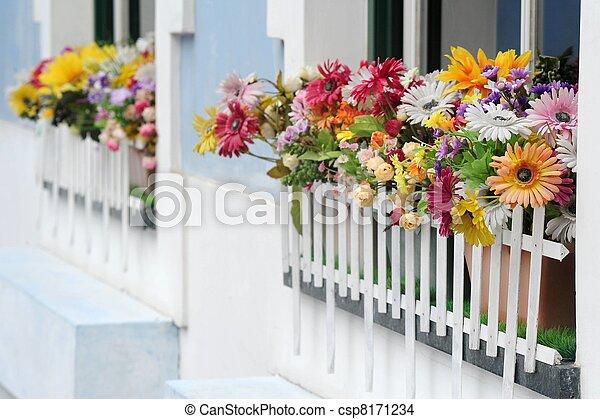 Fenster Blumen Fotografie Blumen Fensterbank