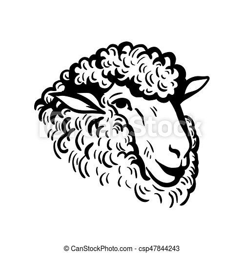 Ferme t te mouton croquis animals t te mouton ferme - Dessin tete de mouton ...