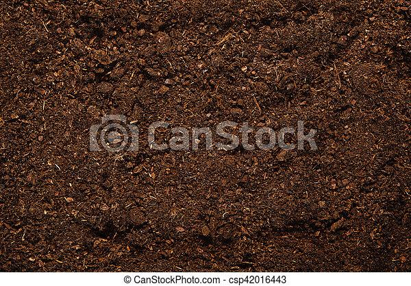 Fertile Garden Soil Texture Background Top View   Csp42016443