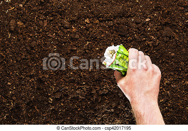 Fertile Garden Soil Texture Background Top View   Csp42017195