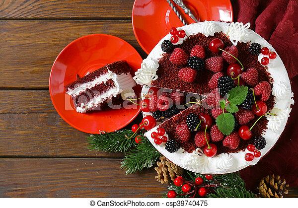 festive dessert Christmas cake - csp39740475