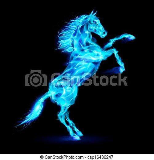 feuer, aufbäumen, pferd, auf. - csp16436247