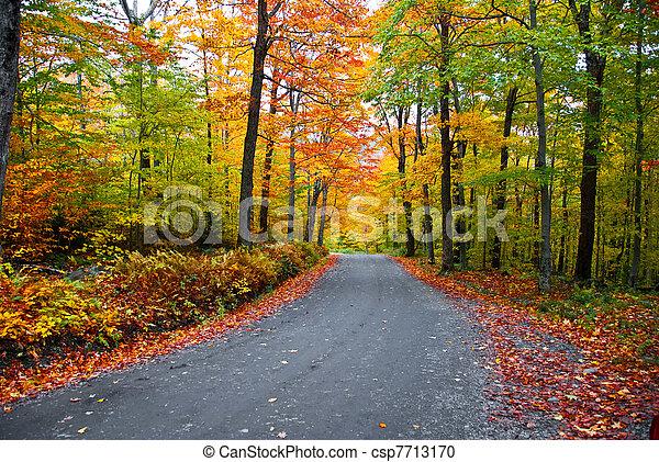 feuillage, automne - csp7713170