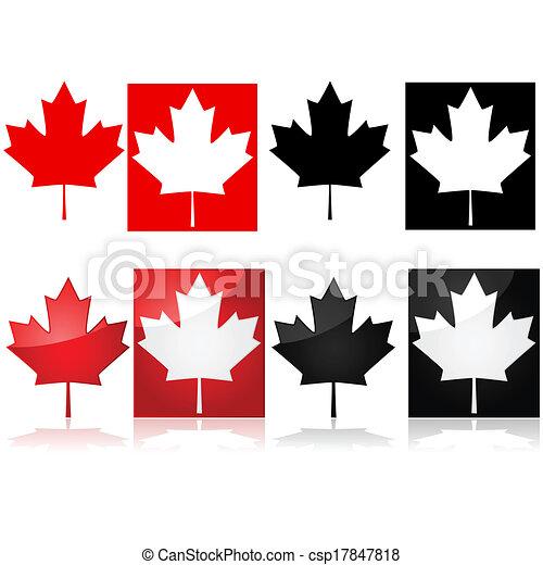 feuille, érable, canadien - csp17847818
