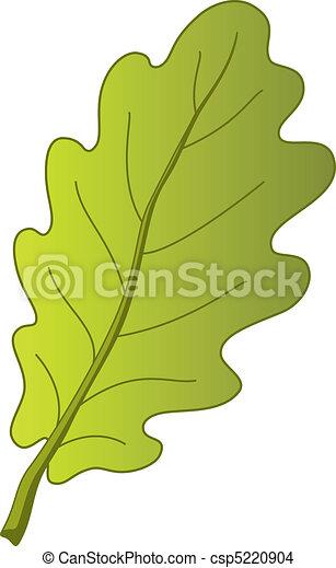 feuille, arbre chêne - csp5220904
