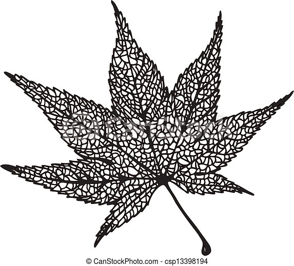 feuille dessin 233rable japon handdrawn feuille